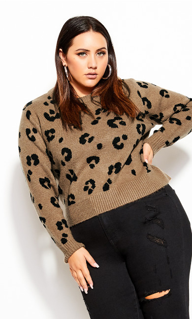 Plus Size Cheetah Jumper - cheetah