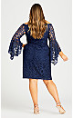 Plus Size Paris Lace Dress - blue